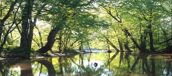 Big Darby Creek - Richard Baumer